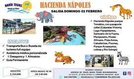 TOUR PASADIA HACIENDA NAPOLES SALIDA DOMINGO 02 DE FEBRERO
