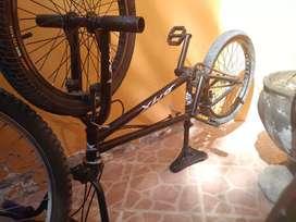 BMX semi profesional