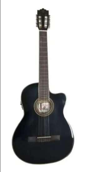 Guitarra Palmer Excelente estado - Precio negociable