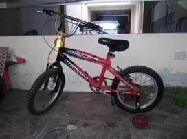 Bicicleta de niño (a)
