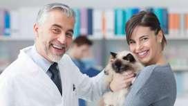 Domicilio veterinario en Medellín
