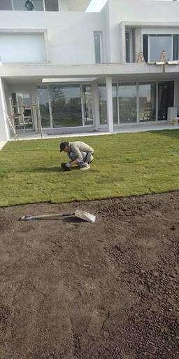 jardineria,podas,mantenimientos en general