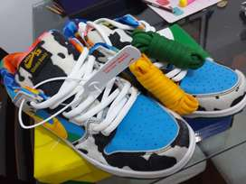 Nike sb shunky dunky