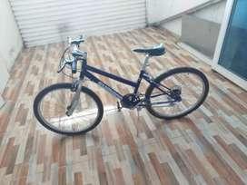 Vendo cicla rin 24 recién pintada