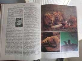 Enciclopedia cumbre ilustre