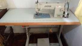 Maquina de coser Industrial (Protex)