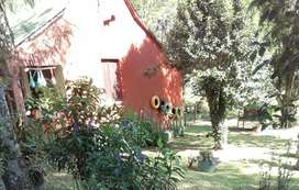 Chacra Colonia Itacuruzu Montecarlo Misiones