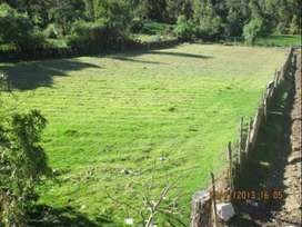 venta de terreno en andahuaylas - talavera costado del centro turistico piscina hualalache.