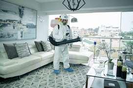 Limpieza Premium Alteliza Home