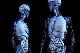 Estudiantes de medicina dicta cursos de Anatomia , Fisiologia , Bioquimica , Genetica , Biologia Molecular etc