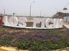 VENTA DE LOTES EN CARABAYLLO EXCLUSIVA URB.LOS FICUS ,CALIDAD DE VIDA CON TITULO DE PROPIEDAD ,SERVICIOS COMPLETOS.