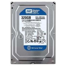 Disco duro Western Digital 320 Gab