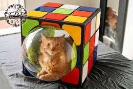 CAT HOUSE RUBIK