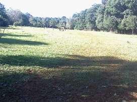 Vendo quinta sobre el río Paraná