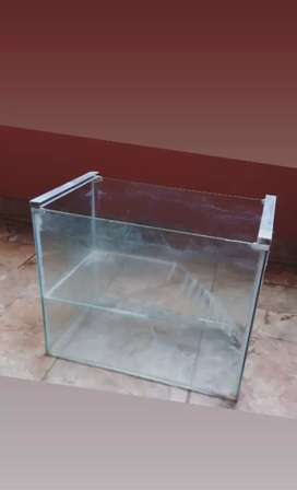 Pecera para hamster o cobayo