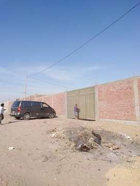 Alquilo almacén en zona Industrial Piura. 1,600 m2.