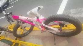 Se vende bicicletas THOR