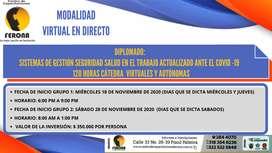 DIPLOMADO: SISTEMAS DE GESTIÓN SEGURIDAD SALUD EN EL TRABAJO ACTUALIZADO   /  120 HORAS CÁTEDRA  VIRTUALES Y AUTÓNOMAS