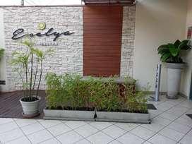 Servicio de Jardineria a domicilio