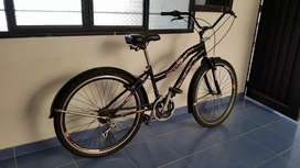 Bicicleta para niña de 10 años en adelante.