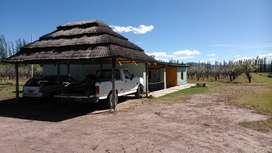 Cabaña en Alquiler en Rama Caída, San Rafael