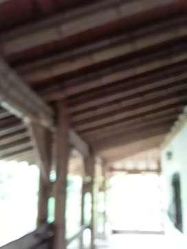 Diseñador en estructuras  en guadua y bambu