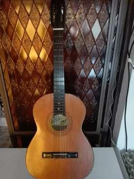 Guitarra Criolla Academia