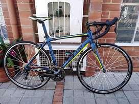 Bicicleta Gw Flamma Shimano Claris M