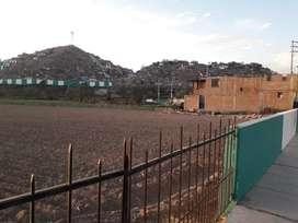 Vendo terreno en Arequipa Tiabaya 8000 m2