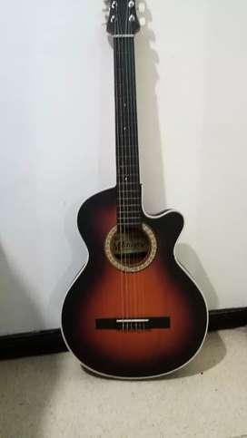 Guitarra y estuche rigido