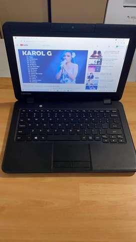 Computador Lenovo 11.6 celeron