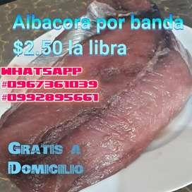 Albacora por Banda