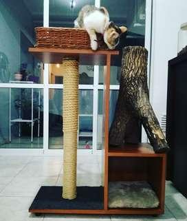 cucha para gatos