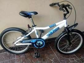 Bicicleta Raleigh rodado 20