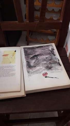 Libro Don Quijotes de La Mancha