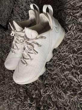Nike Lebron low 14