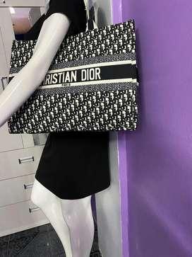 Cartera Cristhian Dior