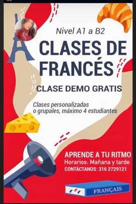 Clases de frances personalizadas o grupales