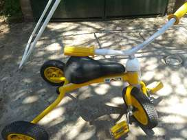 Triciclo rafi