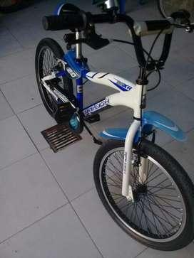 Bicicleta Raleigh Mxr