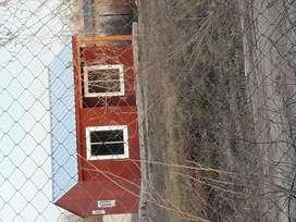 Vendo terreno con casaa 1400mtrs del rio y a 600 de escuela primaria