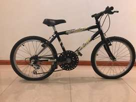 Bicicleta rodado 20 AITA Rollaway con cambios