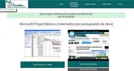 Microsoft Project Básico e Intermedio (con presupuesto de obra)