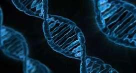 Clases de biología y cs naturales