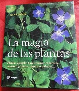 LA MAGIA DE LAS PLANTAS   IGNACIO ABELLA en LA CUMBRE