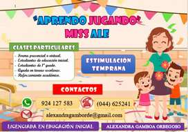 Clases particulares o virtuales