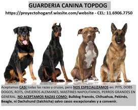 GUARDERIA CANIL SAN FERNANDO