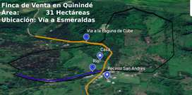 Finca en Venta en Quinindé/Pedro Vicente Maldonado
