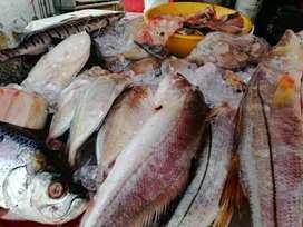 Camarón, pez de mar, agua dulce, pulpo y pargo