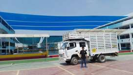 Camión doble cabina T-king
